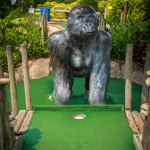 jungle_golf-215